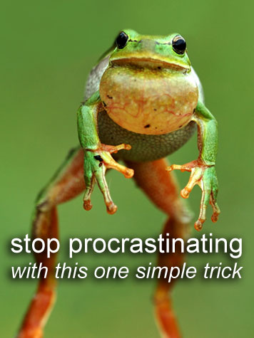 Raise your hand along with me if you tend to procrastinate, but want to stop. (Someday...)